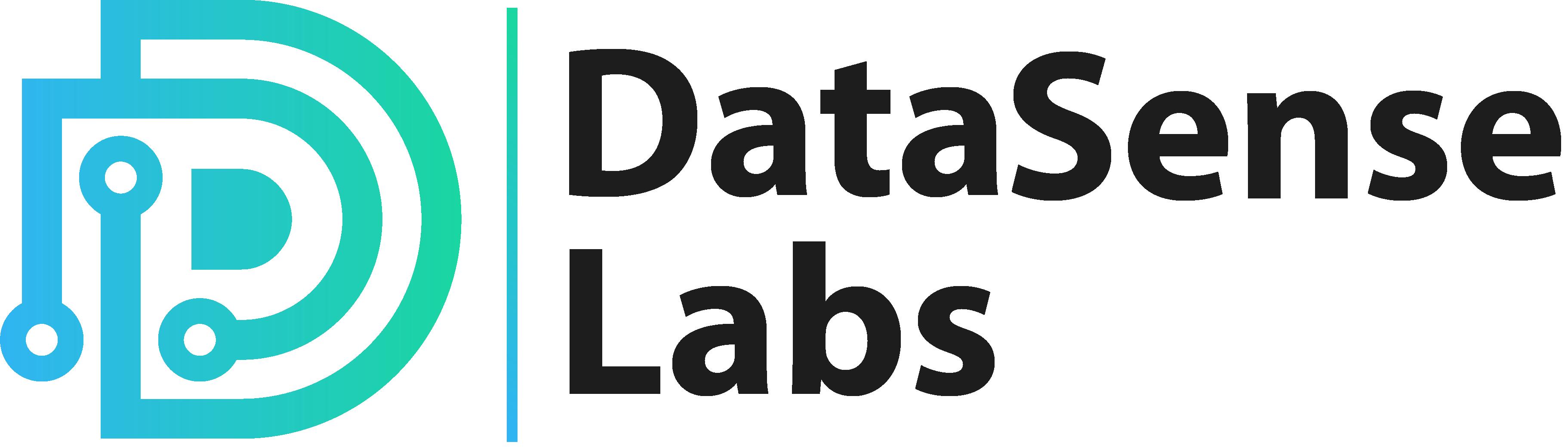 DataSenseLabs |